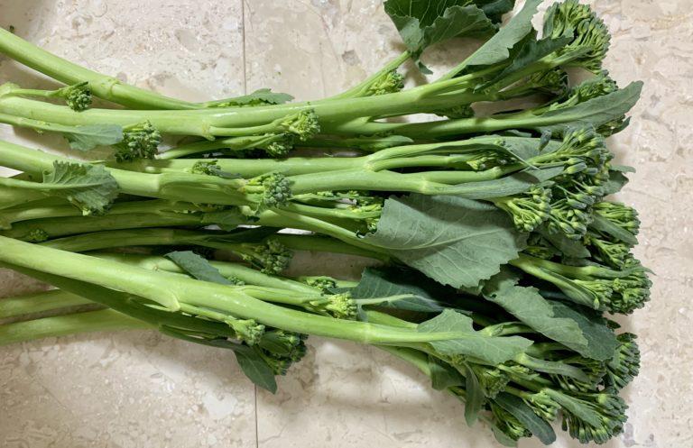 ステックセニョール 茎ブロッコリー